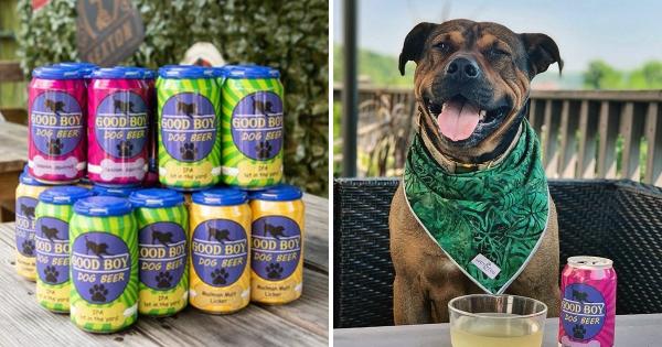 久等了!「汪星人啤酒」4口味上市 終於能和狗狗對飲聊天~